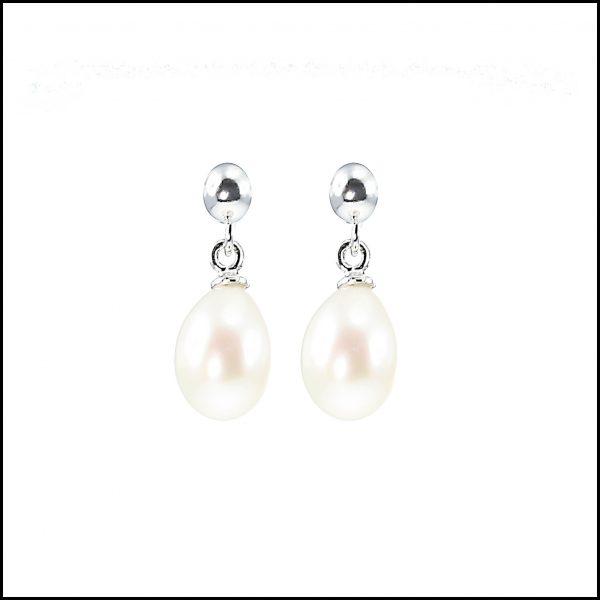 Pearl Drop Earrings-0